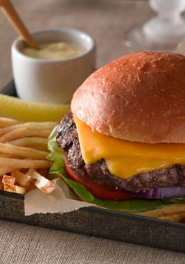 hamburger-princeton-web